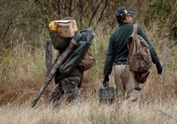 Lets dove hunt with the best outfitters